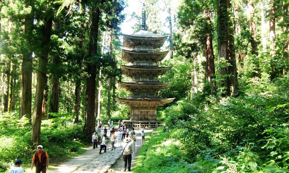 杉の間から見える五重塔