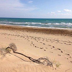 Spiaggia Santa Maria del Focallo