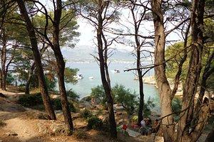 Bene, Parc Suma Marjan, Split, Croatie