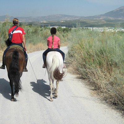 Riding in the Andalucian contryside (21/Aug/15).