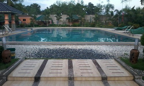 the swimming pool looks inviting