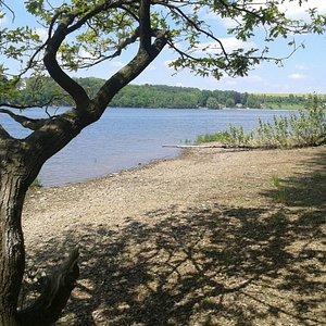 Ein ruhiger Ort am See