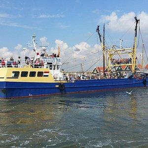 de garnalenboot