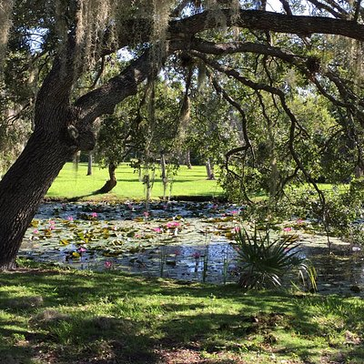 Very beautiful place to enjoy a picnic, photo session, kayak, taking a walk, running.