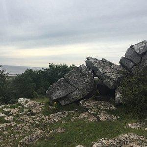 Warton Crag. Small hike, dog friendly. Beautiful views