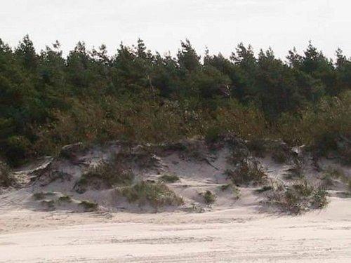 вот такие красивые дюны