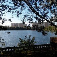 Вид на Борисовские пруды