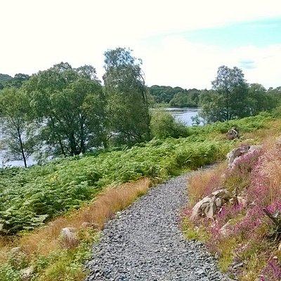 on loch trool walk with loch in view