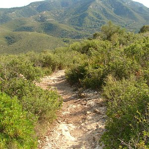 Good Path ( at top )