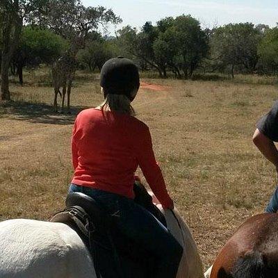 Wildlife encountered includes Giraffe, Kudu, Honeybadger, Zebra, Blue Wildebeest to mention a fe