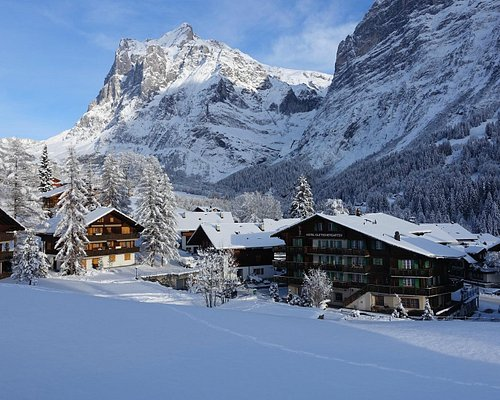 Wetterhorn and Grindelwald in Winter