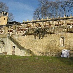 Winzerberg mit 4 Terrassen