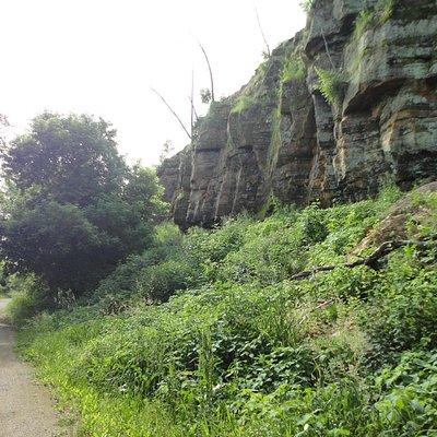 Bluffs near Menomonie