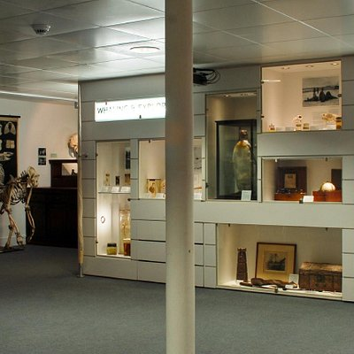 The D'Arcy Thompson Zoology Museum