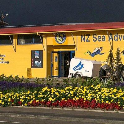 NZ Sea Adventures Dive Centre