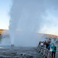 Beehive Geyser in Early Morning Action