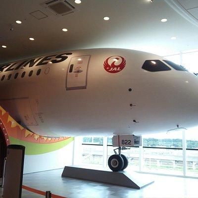 14.08【カンドゥ】JALの飛行機