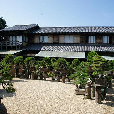 A traditional Japanese House in Shunka-en BONSAI Museum