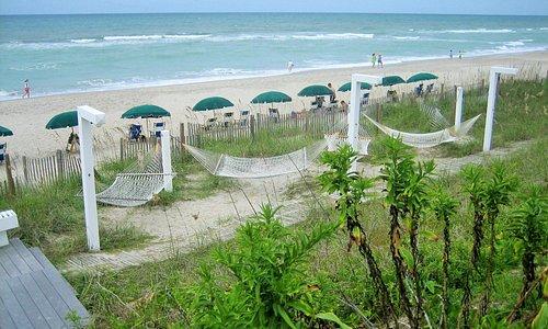 Guest hammocks near the beach
