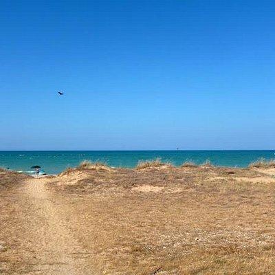 Dune in estate lato nord di Casalbordino lido