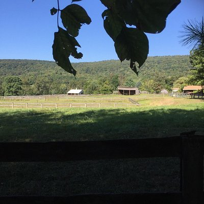 Former Mystic Llama Farm