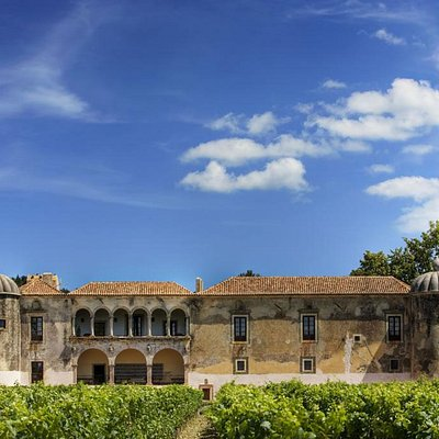 Heritage tours with visit to beautiful palaces