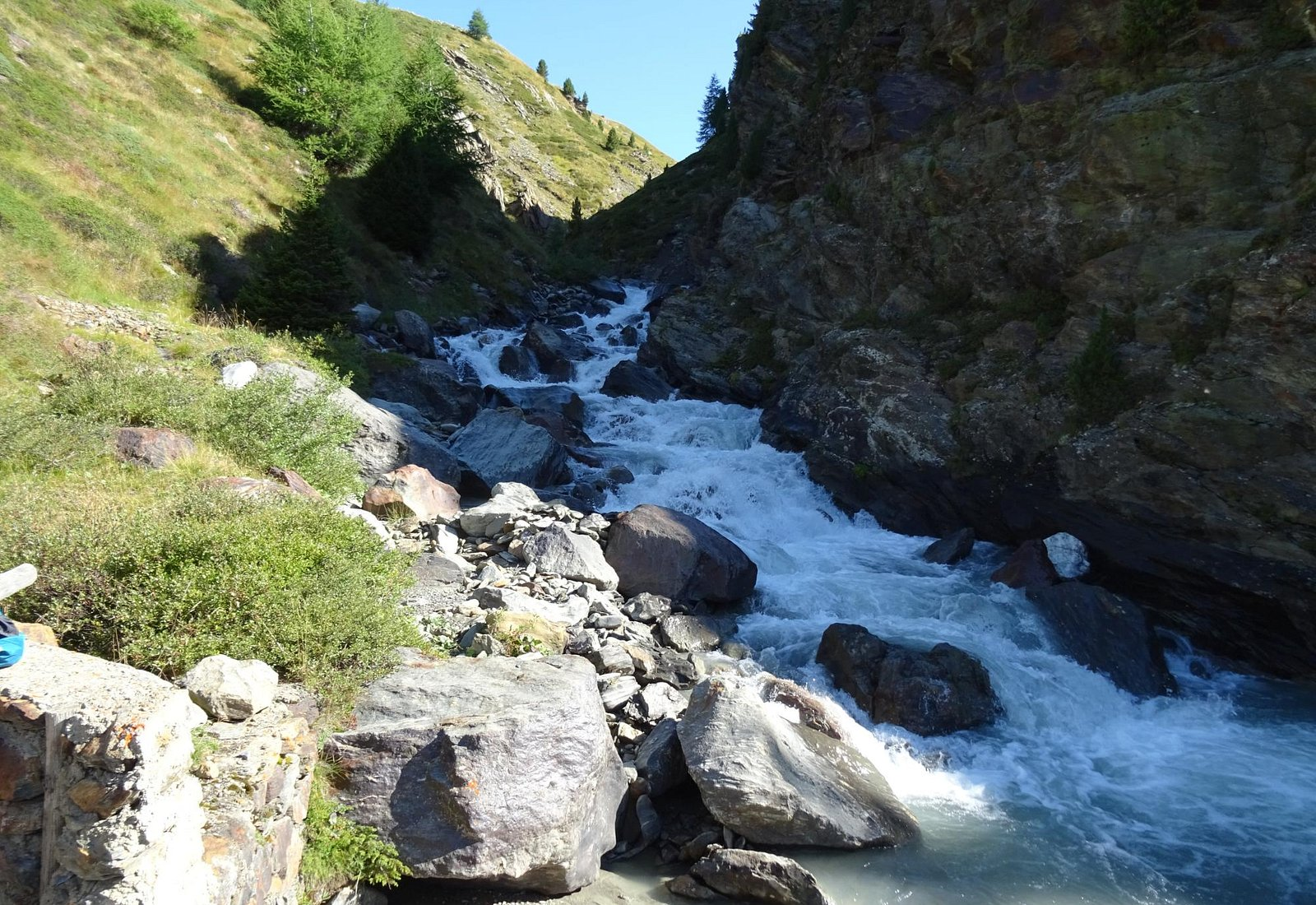 Valle dei Forni 04