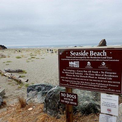 Welcome to Seaside Beach