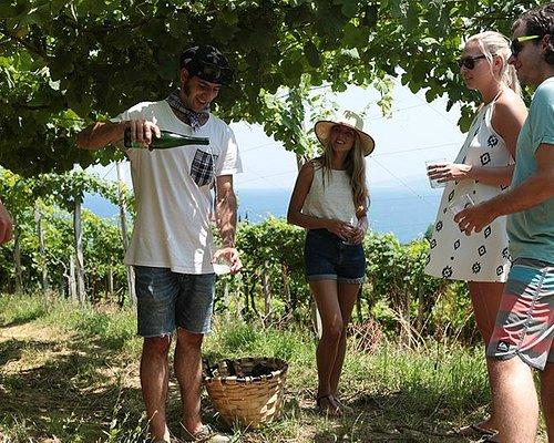 World best wines