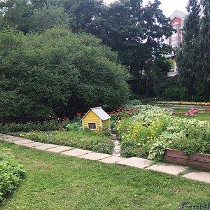 Уголок Ботанического сада