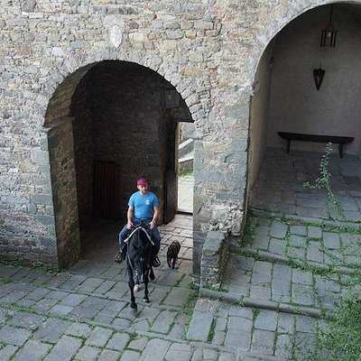 Via Francigena a Cavallo