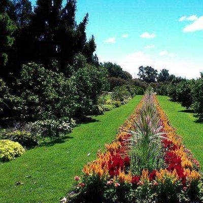 Ornamental Gardens of Experimental Farm