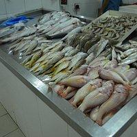 Ajman Fishmarket