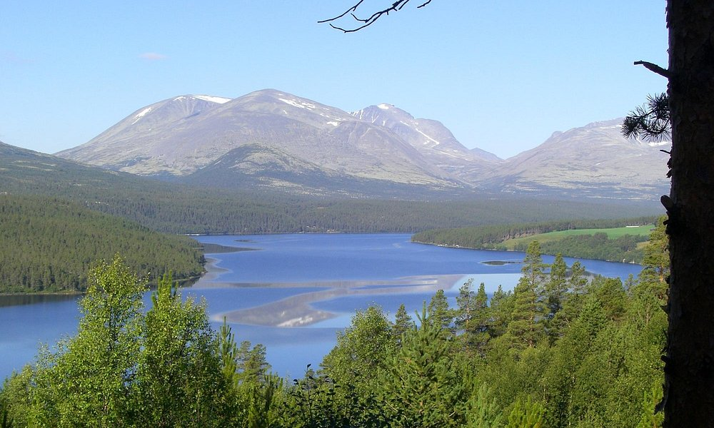 Flott utsikt over Rondane