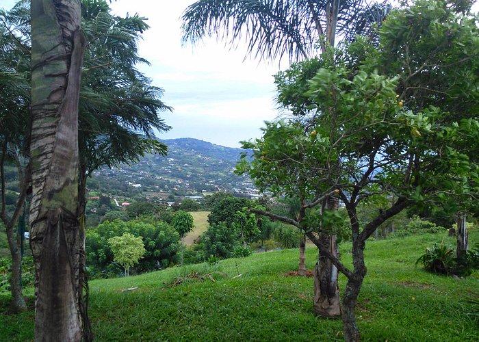 Cerros de Escazu, Pico Blanco