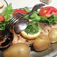 Dourada peixe
