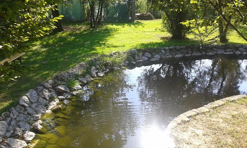 laghetto nel parco
