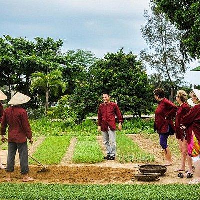 Hoian Rural Eco - Tra Que Village