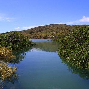 Leeke's Creek