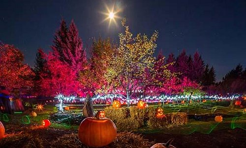 Fall Festival at the Botanical Garden