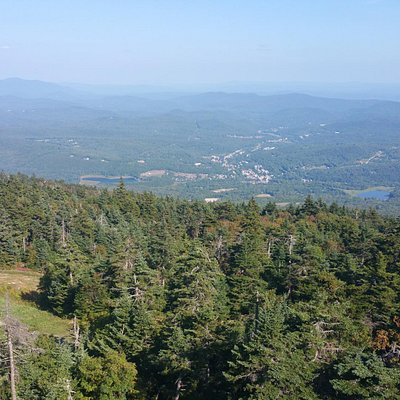 South View from the Fire Tower