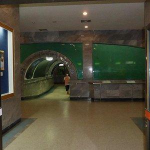 Aquarium Roi-Et