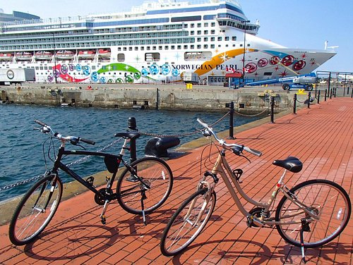 Pick up and drop off at the Cruise ship Terminal.