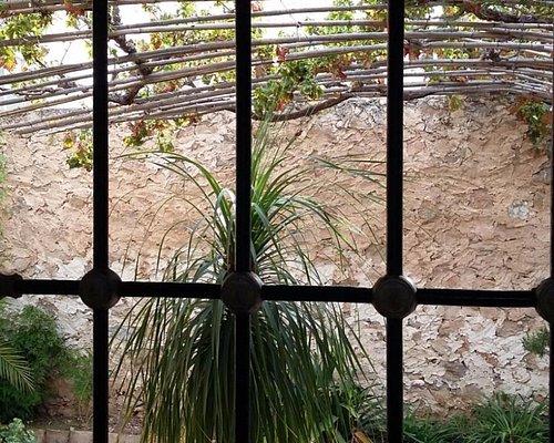 Vista del patio interior desde el dormitorio de Miguel H.