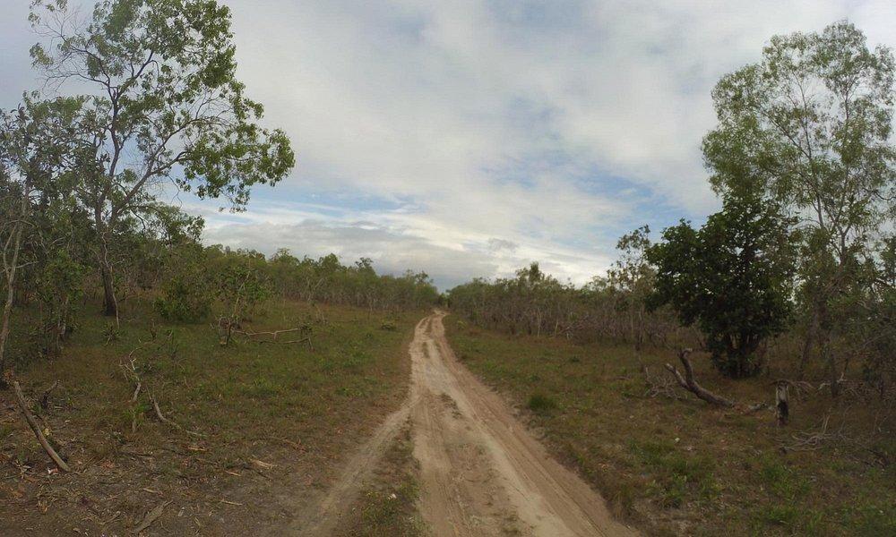 Menuju Papua Nugini