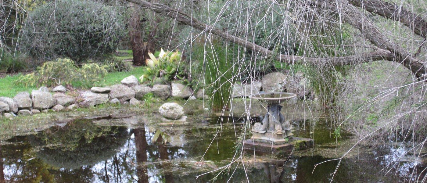 Coombe Cottage Garden