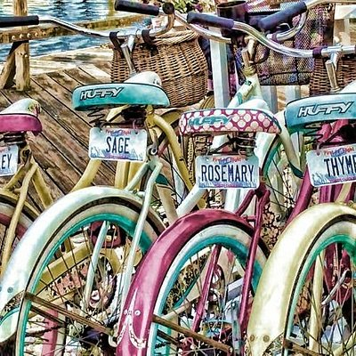 Award winning bike tours with Hungry Town Tours