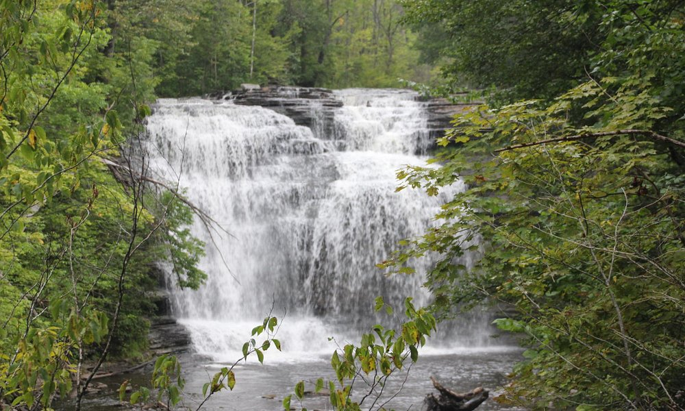 Pixley Falls State Park - View from the trail