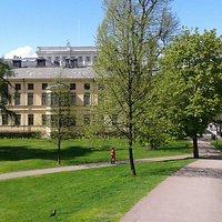 Парк при музее Синебрюхова
