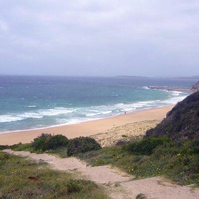 Bungan Beach, Sydney, Australia